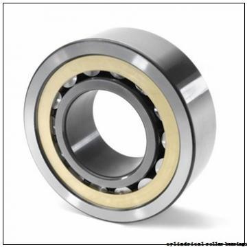 220 mm x 400 mm x 65 mm  NACHI NJ 244 cylindrical roller bearings