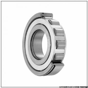 Toyana NCF1892 V cylindrical roller bearings