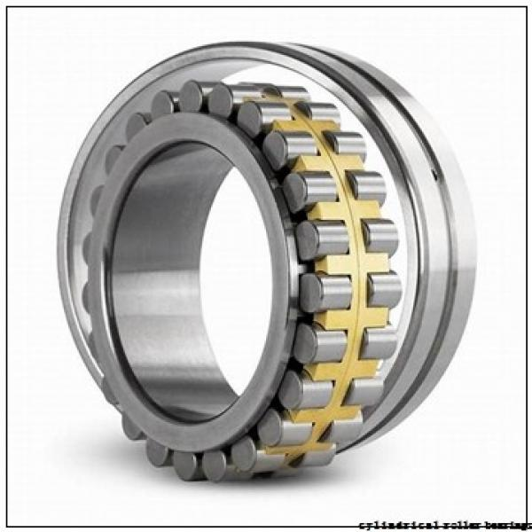 40 mm x 55 mm x 40 mm  ISO RNAO40x55x40 cylindrical roller bearings #2 image
